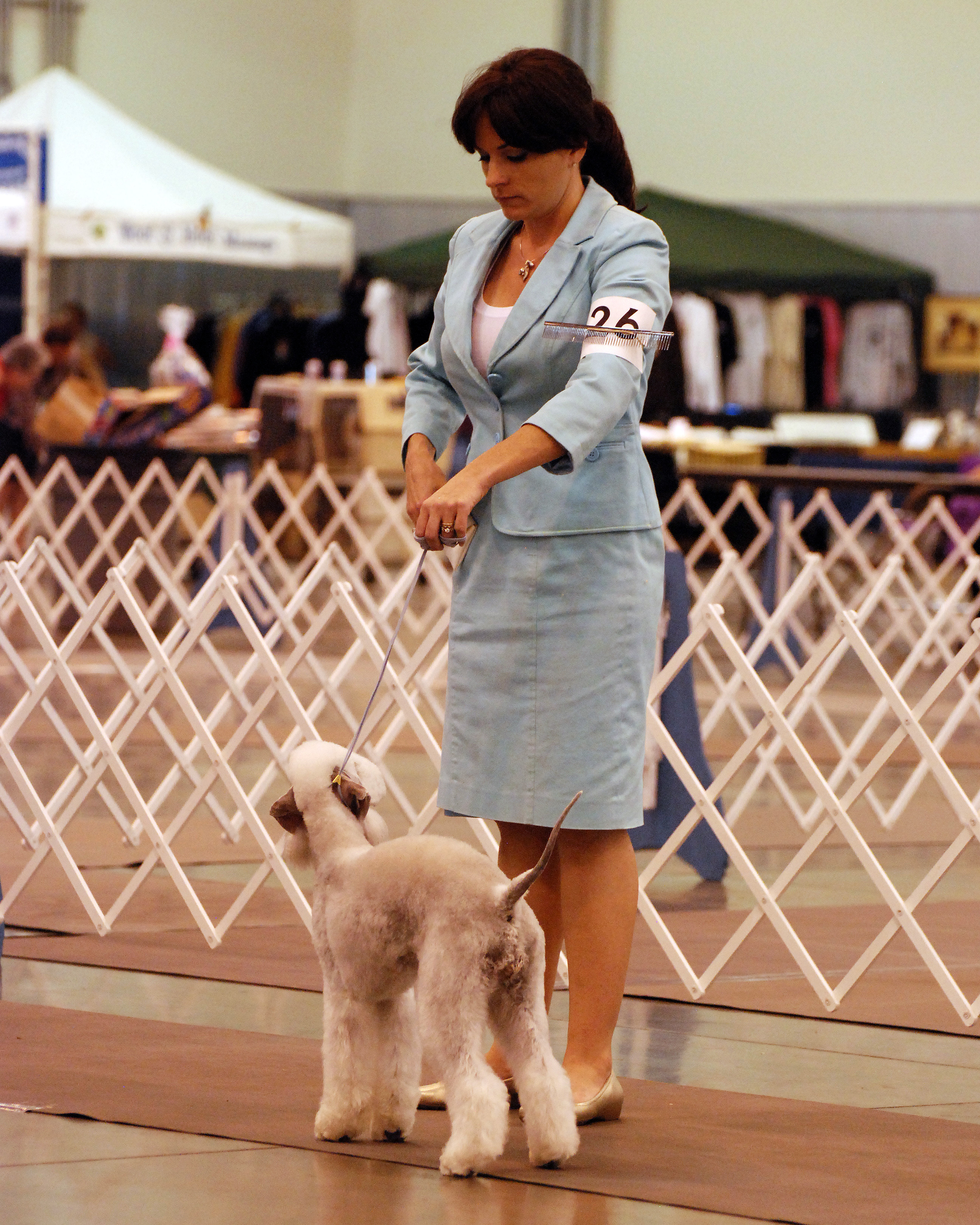 Dog Show Handler Dress Code